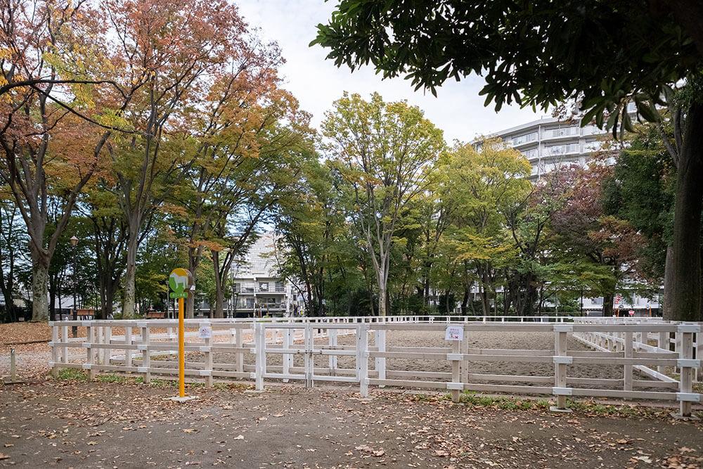 東板橋公園 公園内施設
